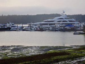 A 209-foot yacht dwarfs all the other boats in the marina at port McNeill