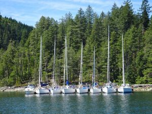 A holiday weekend in Von Donop Inlet brought out several rafts of boats